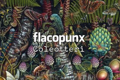 FLACOPUNX – Coleotteri